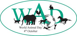World Animal Day!