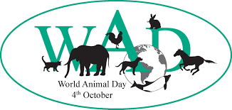 World Animal Day !