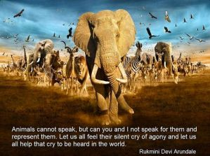 world-animal-day-2016-best-motivational-quotes-and-images-2