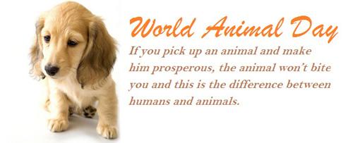 world-animal-day-essay