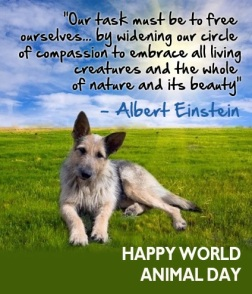 world-animal-day-image1