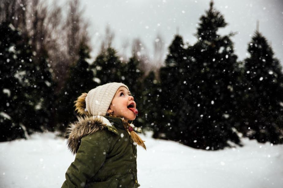 A SNOWFLAKE'S TALE – PARTI